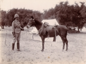 Horses and Horseflesh Losses in the Boer War