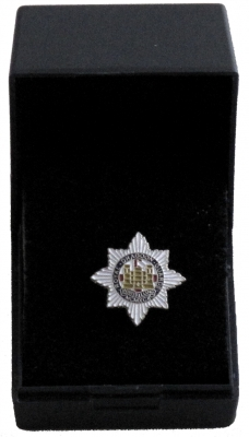 Lapel Badge - The Royal Dragoon Guards